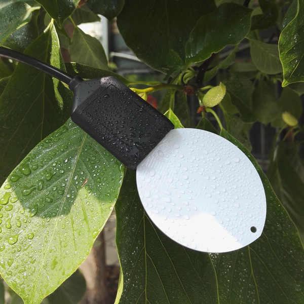 LWS10-叶面湿度传感器,叶面水分传感器,4-20mA模拟量输出(可定制模拟量输出范围)
