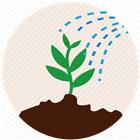 土壤水分/温度传感器